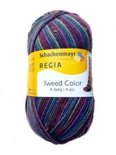 Regia TWEED COLOR  4fach
